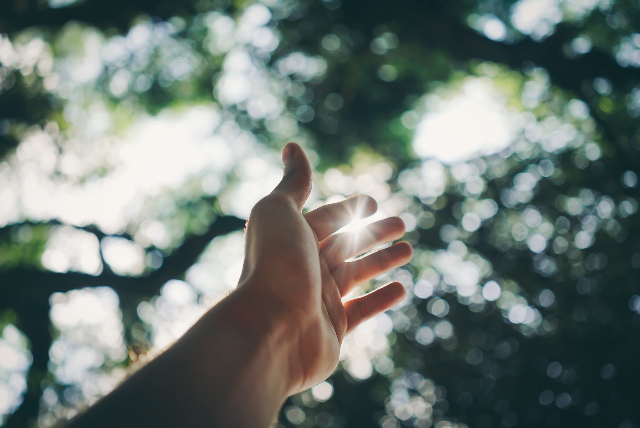 Parkinson, Licht en Emotie-img
